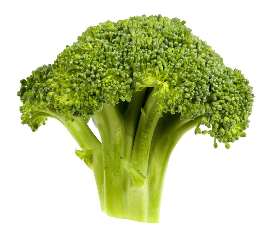 Bio Gemüse Vorsorge